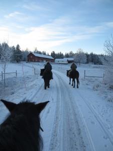Riding through a frozen landscape