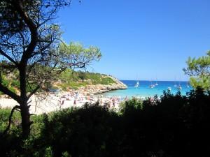MallorcaCalaVarquesView